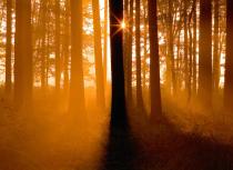 sunrise-in-the-campina-kees-bastmeijer