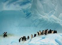 antarctica-kees-bastmeijer-iv-klein