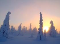 finnish-winter-kees-bastmeijer-2008