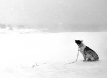 Kulusuk-Groenland-Kees-Bastmeijer-small